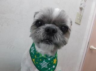 15.7.26北井 ラブ.JPG